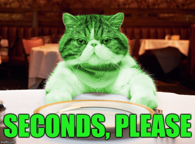 RayCat Hungry | SECONDS, PLEASE | image tagged in raycat hungry | made w/ Imgflip meme maker