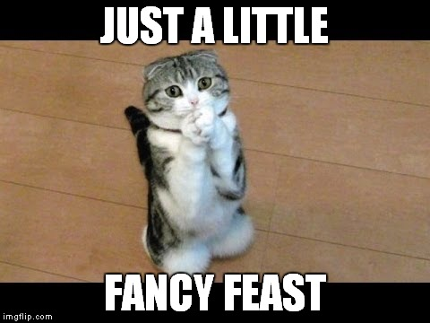 JUST A LITTLE FANCY FEAST | made w/ Imgflip meme maker
