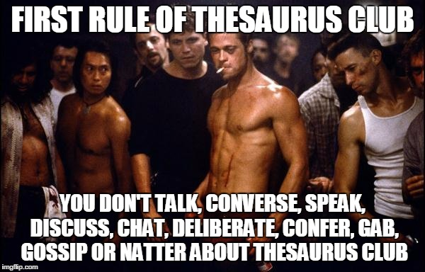 brad pitt fight club | FIRST RULE OF THESAURUS CLUB YOU DON'T TALK, CONVERSE, SPEAK, DISCUSS, CHAT, DELIBERATE, CONFER, GAB, GOSSIP OR NATTER ABOUT THESAURUS CLUB | image tagged in brad pitt fight club | made w/ Imgflip meme maker