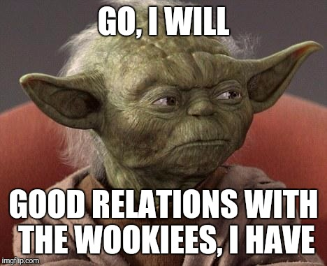 When I get asked to go to a music festival... | GO, I WILL GOOD RELATIONS WITH THE WOOKIEES, I HAVE | image tagged in yoda,festival,hippie,star wars,ohio | made w/ Imgflip meme maker