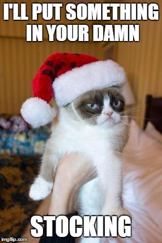 Cat Memes Christmas Fat