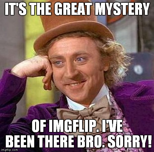 Creepy Condescending Wonka Meme | IT'S THE GREAT MYSTERY OF IMGFLIP. I'VE BEEN THERE BRO. SORRY! | image tagged in memes,creepy condescending wonka | made w/ Imgflip meme maker