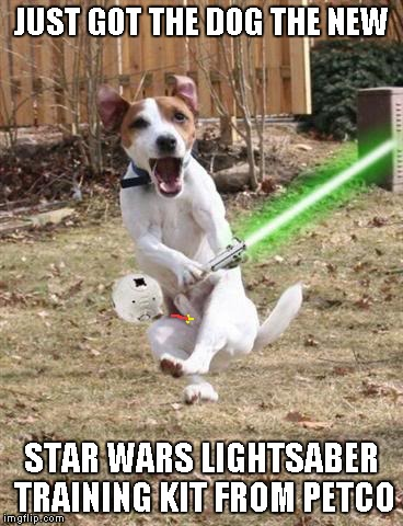 What if the Star Wars pet toys were more like the movie...? | JUST GOT THE DOG THE NEW STAR WARS LIGHTSABER TRAINING KIT FROM PETCO | image tagged in star wars,funny dogs,memes,funny animals,pet toys,funny | made w/ Imgflip meme maker
