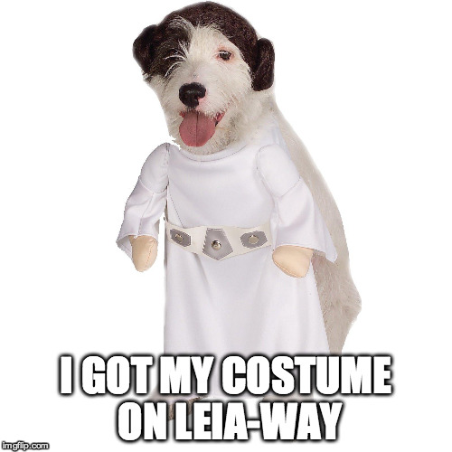 I GOT MY COSTUME ON LEIA-WAY | made w/ Imgflip meme maker