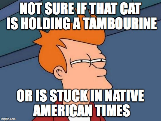 Futurama Fry Meme | NOT SURE IF THAT CAT IS HOLDING A TAMBOURINE OR IS STUCK IN NATIVE AMERICAN TIMES | image tagged in memes,futurama fry | made w/ Imgflip meme maker
