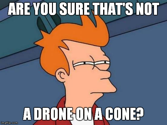 Futurama Fry Meme | ARE YOU SURE THAT'S NOT A DRONE ON A CONE? | image tagged in memes,futurama fry | made w/ Imgflip meme maker