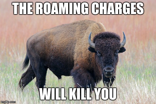 THE ROAMING CHARGES WILL KILL YOU | made w/ Imgflip meme maker