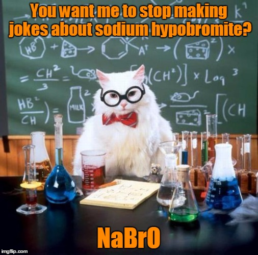 You want me to stop making jokes about sodium hypobromite? NaBrO | made w/ Imgflip meme maker