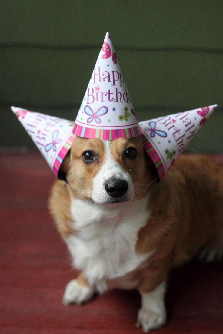 Happy Birthday Preeti Blank Template - Imgflip