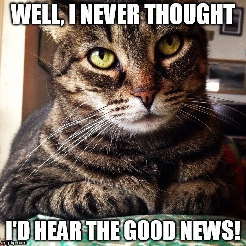 I Never Thought I'd Hear The Good News! | WELL, I NEVER THOUGHT I'D HEAR THE GOOD NEWS! | image tagged in tabby cat,memes,cat,funny | made w/ Imgflip meme maker