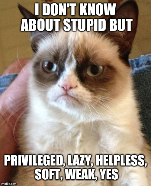 Grumpy Cat Meme | I DON'T KNOW ABOUT STUPID BUT PRIVILEGED, LAZY, HELPLESS, SOFT, WEAK, YES | image tagged in memes,grumpy cat | made w/ Imgflip meme maker