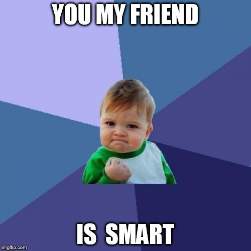 Success Kid Meme | YOU MY FRIEND IS  SMART | image tagged in memes,success kid | made w/ Imgflip meme maker