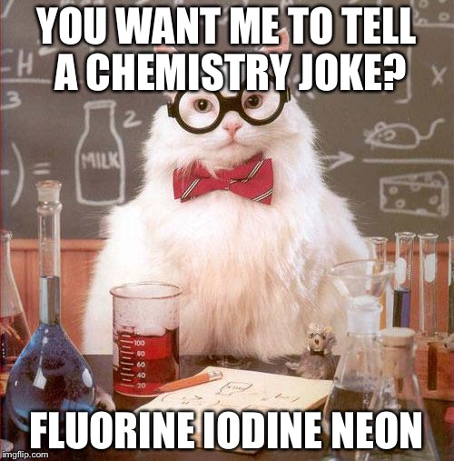 Science Cat | YOU WANT ME TO TELL A CHEMISTRY JOKE? FLUORINE IODINE NEON | image tagged in science cat | made w/ Imgflip meme maker