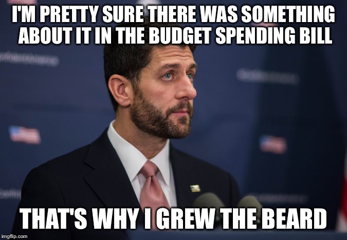 Omnibic  | I'M PRETTY SURE THERE WAS SOMETHING ABOUT IT IN THE BUDGET SPENDING BILL THAT'S WHY I GREW THE BEARD | image tagged in gop,budget,bill,spending,memes,paul ryan | made w/ Imgflip meme maker