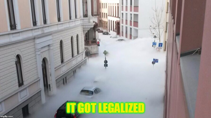 IT GOT LEGALIZED | image tagged in pics | made w/ Imgflip meme maker