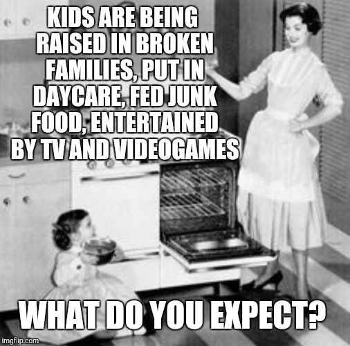KIDS ARE BEING RAISED IN BROKEN FAMILIES, PUT IN DAYCARE, FED JUNK FOOD, ENTERTAINED BY TV AND VIDEOGAMES WHAT DO YOU EXPECT? | made w/ Imgflip meme maker