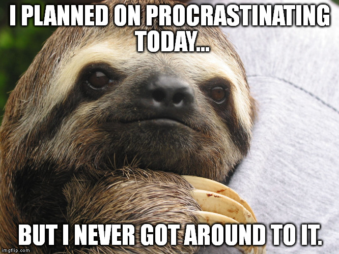 w7wej motivational sloth meme generator imgflip,Sloth Meme Images