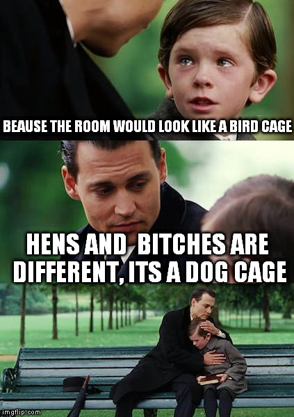 Finding Neverland Meme | BEAUSE THE ROOM WOULD LOOK LIKE A BIRD CAGE HENS AND  B**CHES ARE DIFFERENT, ITS A DOG CAGE | image tagged in memes,finding neverland | made w/ Imgflip meme maker