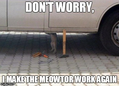 Image tagged in memes,cats,car,motor,meow,lol