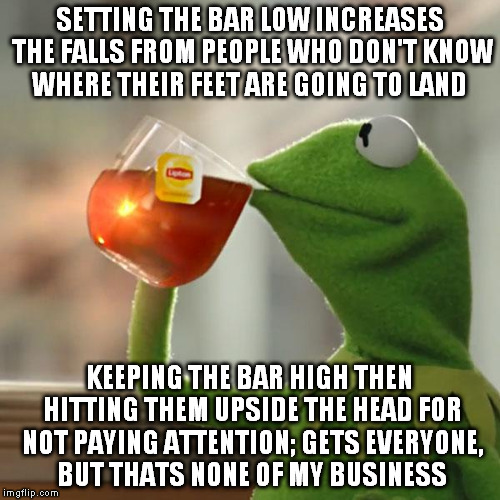 But Thats None Of My Business Meme | SETTING THE BAR LOW INCREASES THE FALLS FROM PEOPLE WHO DON'T KNOW WHERE THEIR FEET ARE GOING TO LAND KEEPING THE BAR HIGH THEN HITTING THEM | image tagged in memes,but thats none of my business,kermit the frog | made w/ Imgflip meme maker