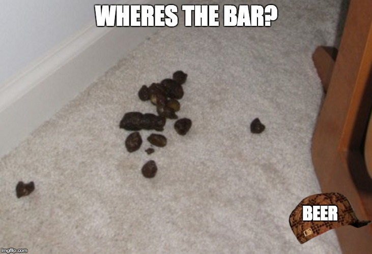 WHERES THE BAR? BEER | made w/ Imgflip meme maker