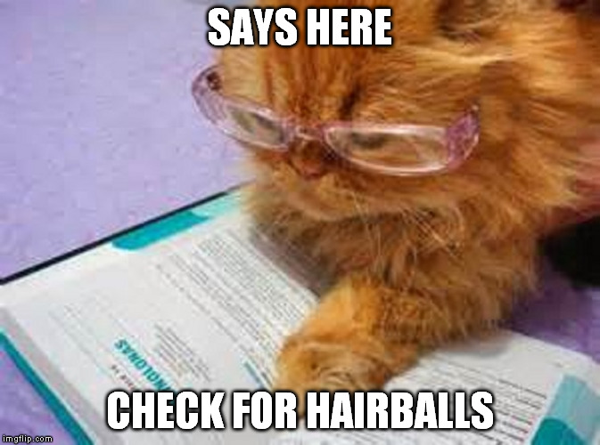 SAYS HERE CHECK FOR HAIRBALLS | made w/ Imgflip meme maker