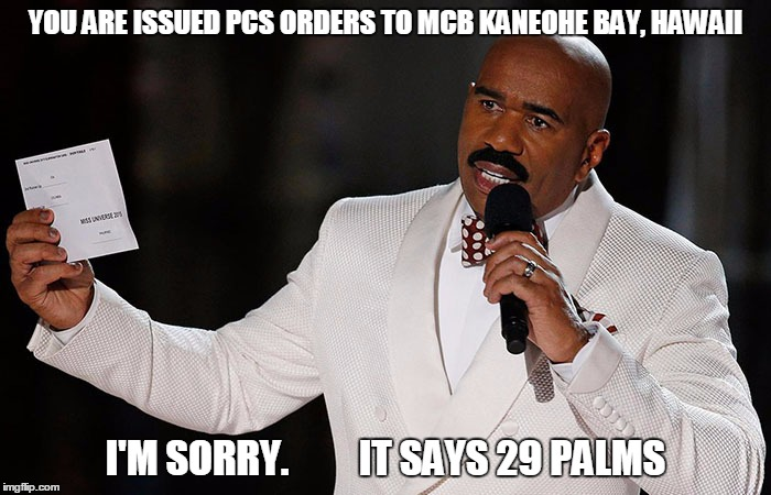 Steve Harvey | YOU ARE ISSUED PCS ORDERS TO MCB KANEOHE BAY, HAWAII I'M SORRY.         IT SAYS 29 PALMS | image tagged in steve harvey,marine corps jokes | made w/ Imgflip meme maker