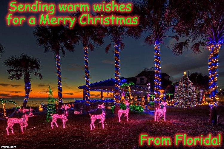 Florida Christmas Imgflip