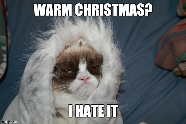 Cold grumpy cat  | WARM CHRISTMAS? I HATE IT | image tagged in cold grumpy cat  | made w/ Imgflip meme maker