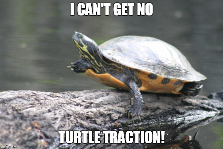 Turtle Traction | I CAN'T GET NO TURTLE TRACTION! | image tagged in turtle meme,get no satisfaction | made w/ Imgflip meme maker