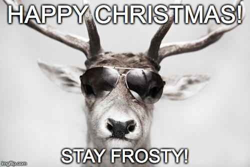 Cool Reindeer | HAPPY CHRISTMAS! STAY FROSTY! | image tagged in stay frosty,happy,merry christmas | made w/ Imgflip meme maker