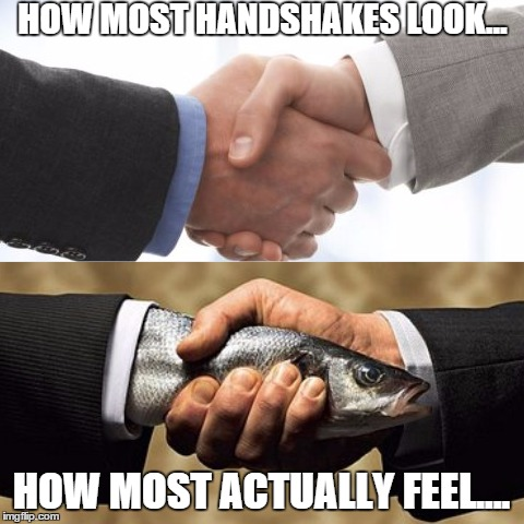 Reality of Handshakes | HOW MOST HANDSHAKES LOOK... HOW MOST ACTUALLY FEEL.... | image tagged in meme,handshake,fish,hands,funny | made w/ Imgflip meme maker