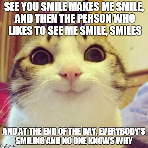 Resultado de imagem para i like to see you smile cats