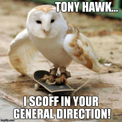 The new birdman! | TONY HAWK... I SCOFF IN YOUR GENERAL DIRECTION! | image tagged in owl,skateboarding,funny | made w/ Imgflip meme maker
