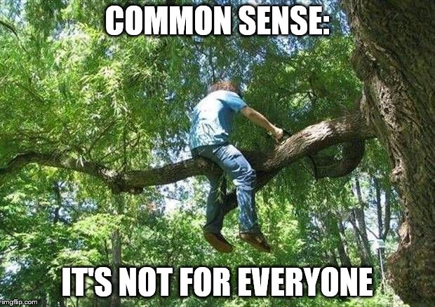 Needing an ambulance in 3...2... | COMMON SENSE: IT'S NOT FOR EVERYONE | image tagged in tree cutter,disaster,common sense,diy | made w/ Imgflip meme maker
