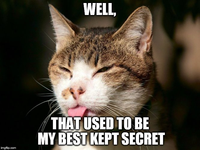cat tongue | WELL, THAT USED TO BE MY BEST KEPT SECRET | image tagged in cat tongue | made w/ Imgflip meme maker