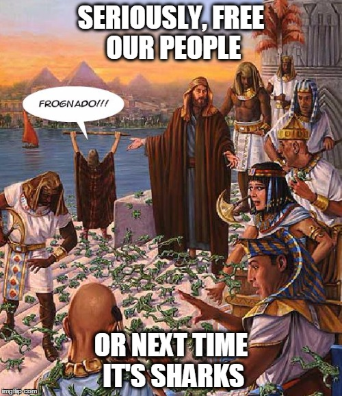 Frognado | SERIOUSLY, FREE OUR PEOPLE OR NEXT TIME IT'S SHARKS | image tagged in frognado,sharknado,bible,plague,frog plague,moses | made w/ Imgflip meme maker