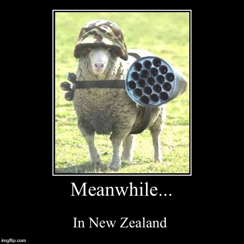 Meanwhile... | In New Zealand | image tagged in funny,demotivationals | made w/ Imgflip demotivational maker