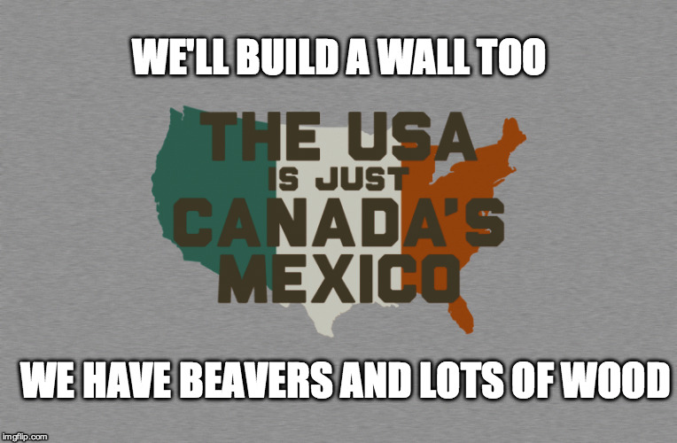 WE'LL BUILD A WALL TOO WE HAVE BEAVERS AND LOTS OF WOOD | made w/ Imgflip meme maker