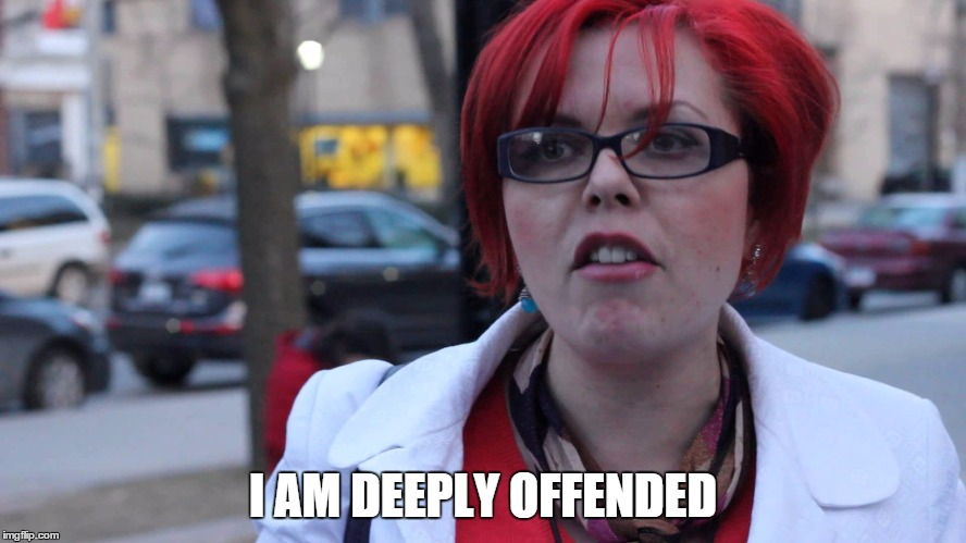 I AM DEEPLY OFFENDED | image tagged in feminazi | made w/ Imgflip meme maker