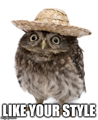 sombrero owl | LIKE YOUR STYLE | image tagged in sombrero owl | made w/ Imgflip meme maker