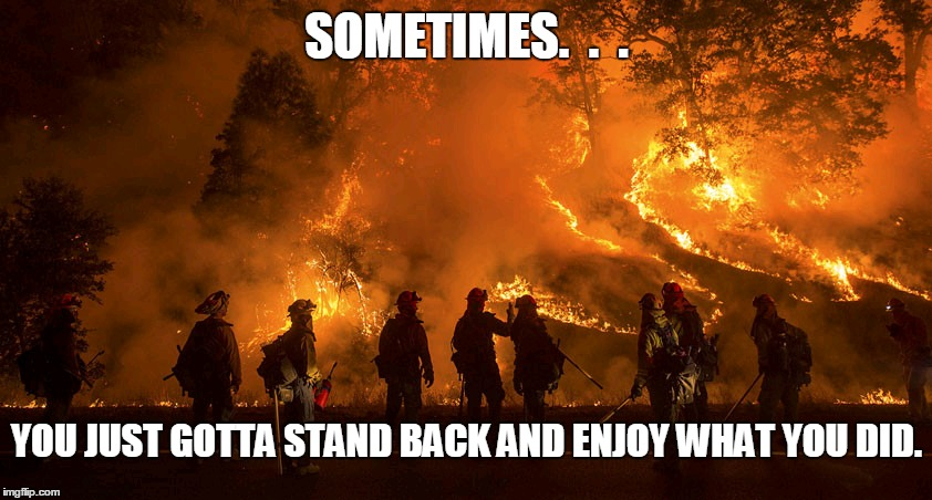 Flame On | SOMETIMES.  .  . YOU JUST GOTTA STAND BACK AND ENJOY WHAT YOU DID. | image tagged in fire,firefighter,forest fire,firestarter,pride,let it burn | made w/ Imgflip meme maker