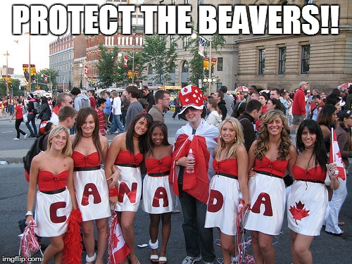 PROTECT THE BEAVERS!! | made w/ Imgflip meme maker