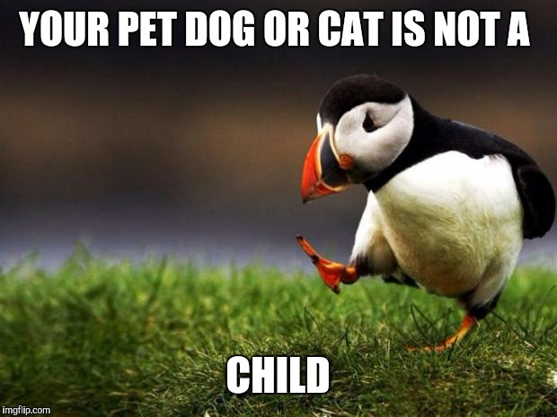 Unpopular Opinion Puffin Meme | YOUR PET DOG OR CAT IS NOT A CHILD | image tagged in memes,unpopular opinion puffin | made w/ Imgflip meme maker
