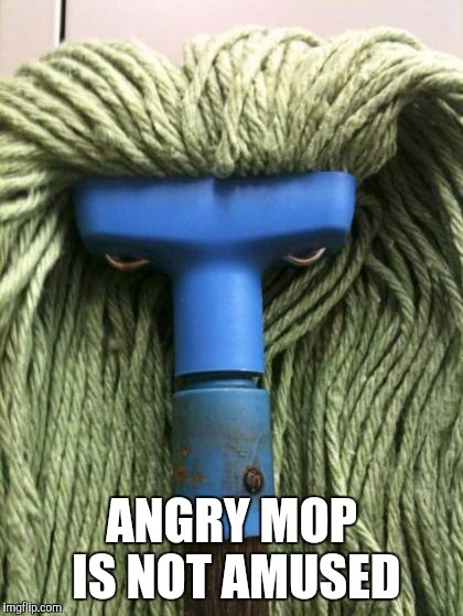 Angry Mop | angry mob is not amused | image tagged in angry mop | made w/ Imgflip meme maker