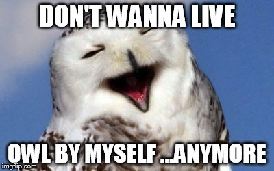 DON'T WANNA LIVE OWL BY MYSELF ...ANYMORE | made w/ Imgflip meme maker