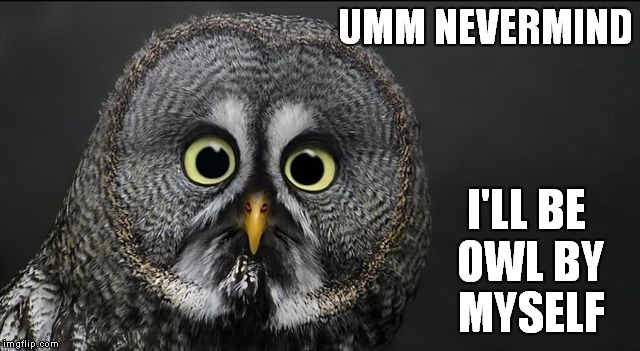 UMM NEVERMIND I'LL BE OWL BY MYSELF | made w/ Imgflip meme maker