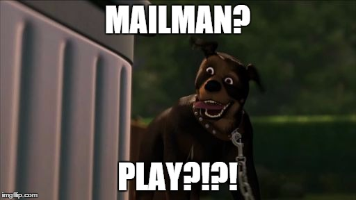 rottie play | MAILMAN? PLAY?!?! | image tagged in rottie play | made w/ Imgflip meme maker