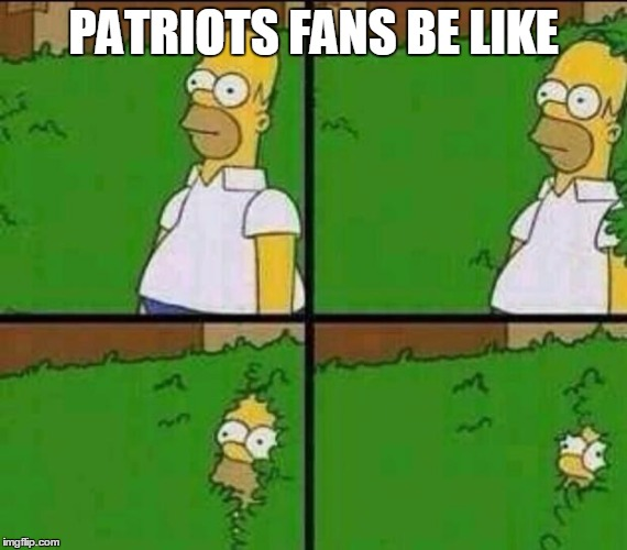 Homer Simpson in Bush - Large | PATRIOTS FANS BE LIKE | image tagged in homer simpson in bush - large | made w/ Imgflip meme maker