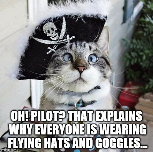 Even the best of us get it wrong sometimes | OH! PILOT? THAT EXPLAINS WHY EVERYONE IS WEARING FLYING HATS AND GOGGLES... | image tagged in memes,spangles,pirate,pilot,misunderstanding | made w/ Imgflip meme maker